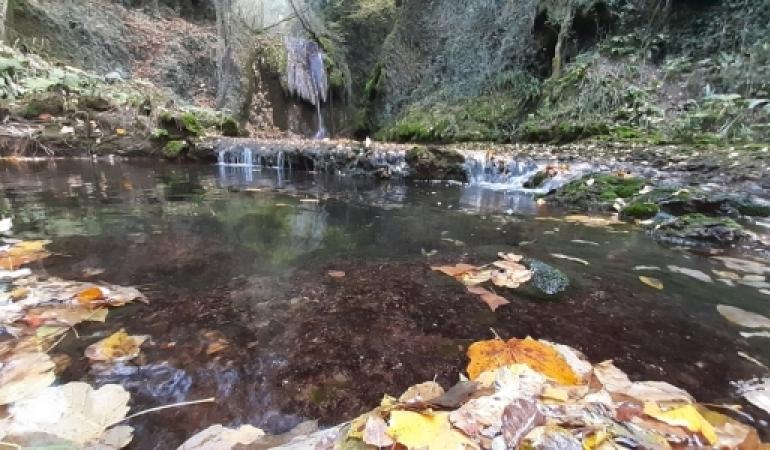 Il Parco della Cascata – Attività per i residenti