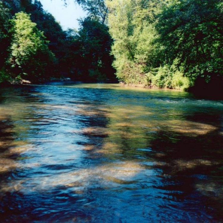 #Restartfromnature: discovering the Nera River Park