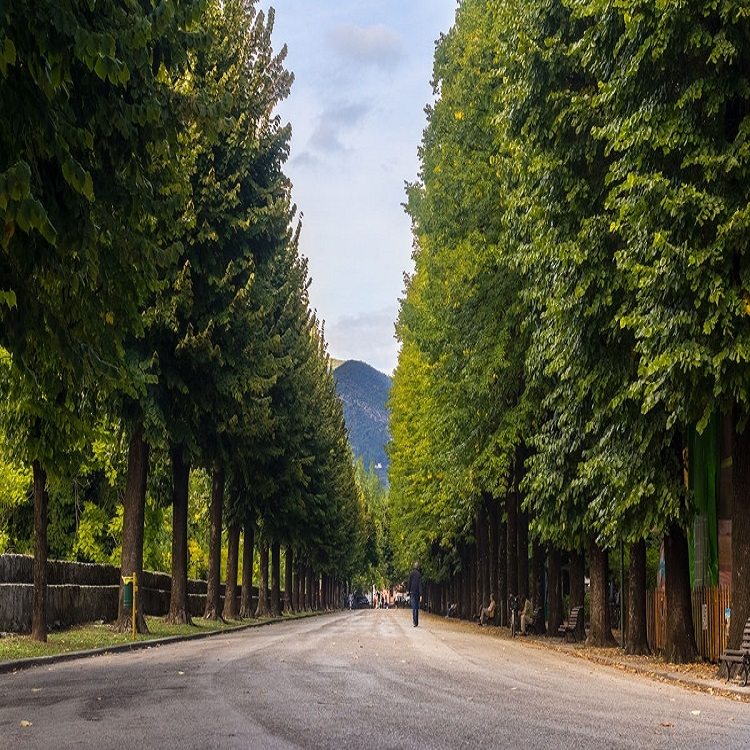 The green monuments of Terni